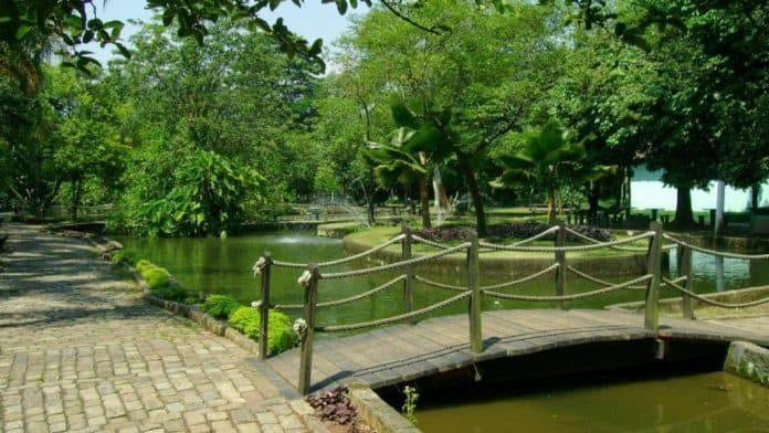 jardim-botanico-de-santos-696x392-3686373-8088302-1507316